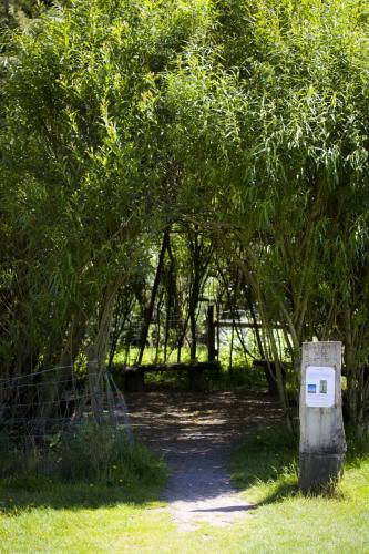 Bowland Wild Boar Park 040617 120 © Nick Dagger Photography
