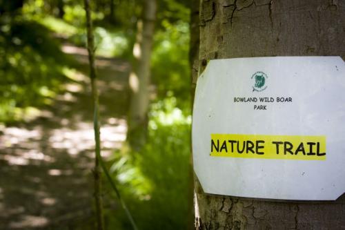 Bowland Wild Boar Park 040617 122 © Nick Dagger Photography